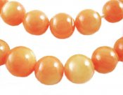 Orange snäckskal 5 mm 25-pack